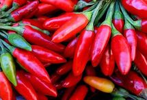 Chili Peppers - Peperoncino / Hot hot hot!