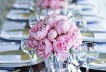 (Hopeful) Wedding Planning / by Dana Nunez