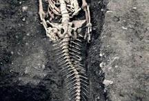 Fake archeology