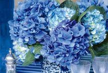 My PopLife - WARM BLUE