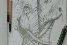 Sketchbook animal drawings
