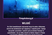 wilgoć