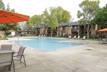 The Falls at Arden / Discover a Community Redefined® in Sacramento, CA || Learn more about leasing & apartment availability: http://www.thefallsatarden.com || 2345 Northrop Ave, Sacramento, California 95825 || Contact us to take a tour today: 916-489-2345 || @TheFallsatArden