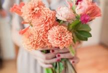 Flowers - Wedding / by Brittannie Hedrick