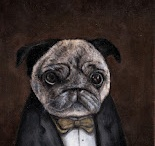 Amazing Pet Portraits