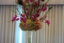 Wedding:  Florals / by Verona Burnham