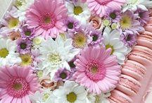 коробочки с цветами
