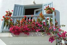 Flower balcony / by Asra Tahir