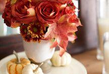 Fall & Winter Decor / by Katy Brunkard