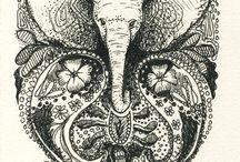 Elephants / by Amanda White