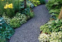 Gardening & Backyard Design / Ideas to creating a backyard oasis!