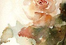 Rose / Watercolour