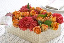 In Bloom / by Ladies' Home Journal