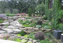 Home Girl: Tiered/Terraced Landscaping / by Michelle C