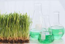 Organic chemistri