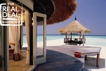 Maldives / It's been one year since we've added Maldives to our lineup. Check out these beautiful hotels.