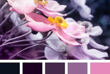 x2_Colour Palette Inspirations