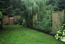 Fence Ideas / by Debbie Cress