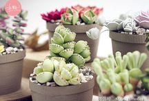 cactus y suculentas quilling