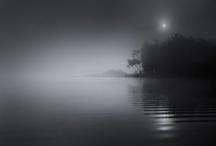 Lac de Sanguinet / Le Lac, ses plages et les forêts environnantes vous proposent mille bonheurs à partager avec en famille ou entre amis.  Les eaux calmes et sécurisées permettent la pratique de multiples activités, de la baignade aux activités sportives nautiques, il y en a pour tous les goûts !