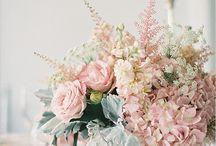 powder pink wedding