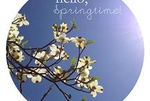 Hello Springtime! / by Linda Barnhart