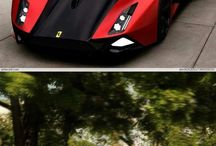 Magnificent Motor Vehicles