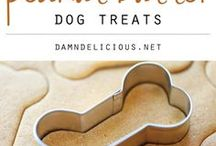 doggo treats