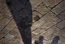 AIZENEV - VENEZIA / Mostra fotografica su Venezia - Marzo 2013
