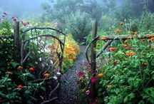 gardens and growing things / by June Matthews