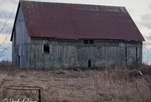 Old Barns / Barn LOVE