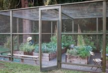 Edible Gardening / How-to's, inspiration, info, and more for growing your own food