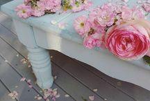 My Cottage (Bella's Rose Cottage)