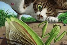 For the Love of Cats / by Nancy Bardt