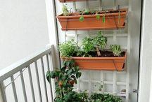 balkonGarden