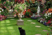Garden Landscape Beauty / Landscaping ideas / by Debbie Howard