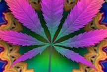 Weed ❤