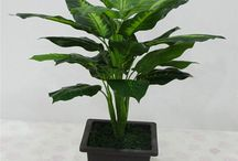 Artificial plants and flowers / special gifts for various occasions including wedding, birthday. Buy luxury gifts, home decoration, artificial plants and flowers