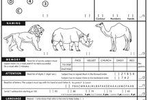 assessment/ arviointi