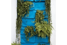 Fabulous Outdoor-ness  / by Sprinkles Of Whimsy