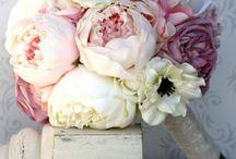 Bouquet de mariée / ❤️❤️❤️❤️❤️❤️