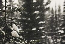 Winter..!!