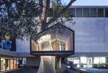 L'architecture moderne utilise la cabane dans les arbres pour illuminer le musée