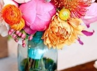 Flowers / by Sunrise Image