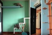 CAT Design / Arquitetura para gatos