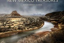 MNMP's Summer of Treasures Campaign