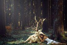 Встреча с оленем