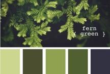 Colors / by Valiel Elentári
