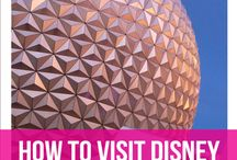 Disney World | Solo Trips