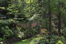 bahçe-garden